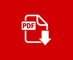 PDF24 Article To PDF