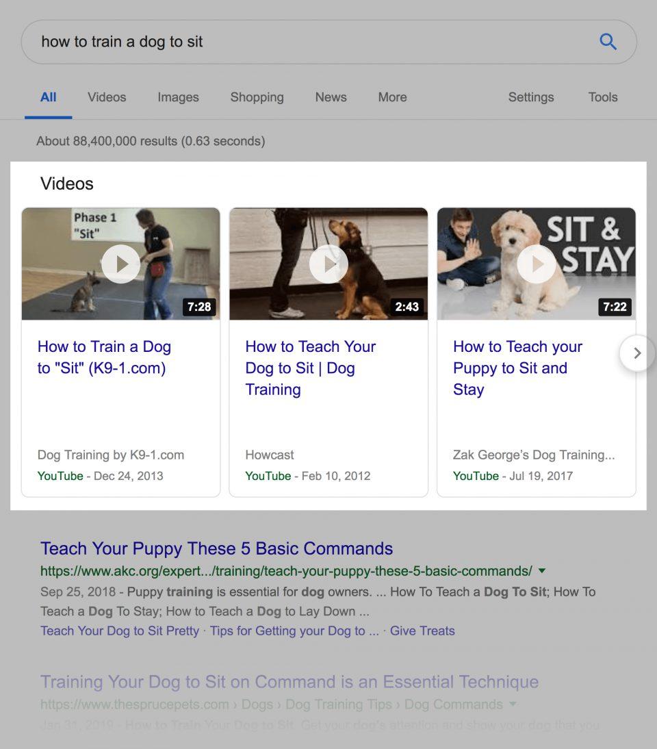 dog-videos-serp